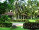 Отель Tamarind Tree 3*. Внешний вид
