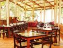 Отель Hotel Insight 3*. Ресторан